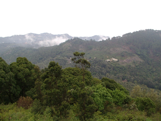 View from Sherveroyan temple, Yercaud